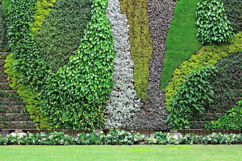 living-wall-1-579c4b1e5f9b589aa9c165ce.t