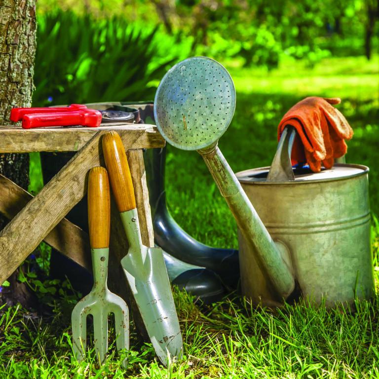 large.Gardening-768x768.jpg.1e94aa5100ef